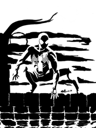 Black suit Spidey perched by CagsCreations