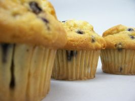 Muffins by JamieLeigh