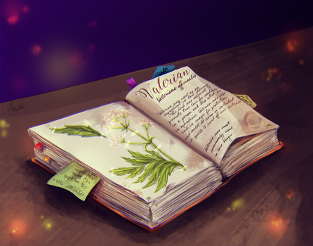 Day 6 - Book of Shadow by iNhyx