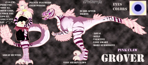 - Grover - full ref by xXFireStarryXx