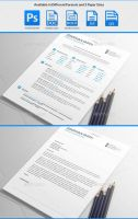 Flash Resume Templates by maruf1