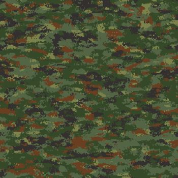 Camouflage by Master-at-Arms