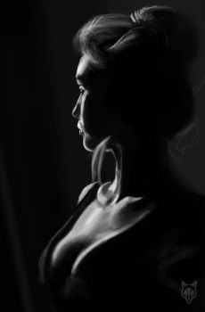 light study by Wolkenfels