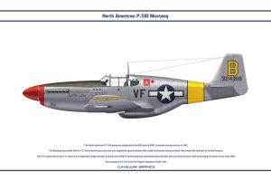 Mustang USAAF 5th FS 1 by WS-Clave