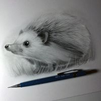 Hedgehog Drawing by LethalChris