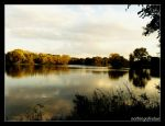 Autumn view by nothingofvalue