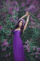 Lilac by Anette89