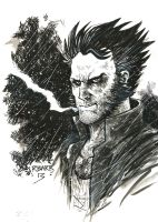 The Wolverine by RADMANRB