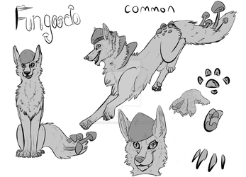 Fungado adopts - Common by Maxiswarriorparadise