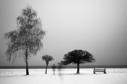 In A Frozen World (BW) by torobala