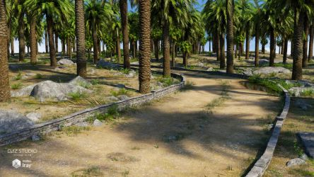 Palm Road (img01) by Andrey79