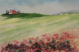 Poppy Field by Jennyben