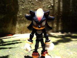 Shadow The hedgehog by xavierlokollo