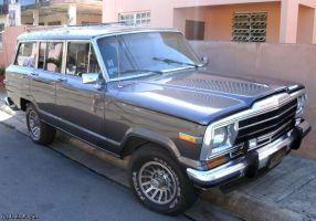 81' Jeep Wagoneer by Mister-Lou