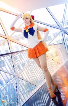 Sailor Venus - Sailor Moon III by Calssara