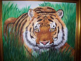 Bengal Tiger by LindseyTaylor