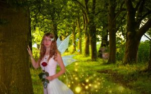 Fairy by Bianka98