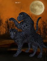 Panthers by oldhippieart