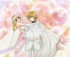 Wedding of Lucy and Link (crossover) by KaSaKu