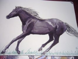 andalusianstallion-watercolor2 by Magydisney