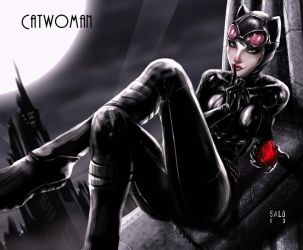 Catwoman by sal0