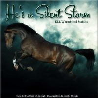 He's a Silent Storm by Explicit18