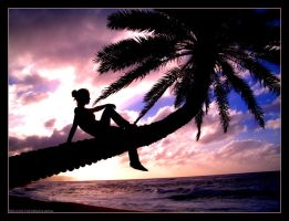 Paradise Found by indie-cisive