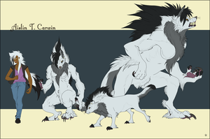 Aislin Carwin Ref Sheet by CookieAsylum