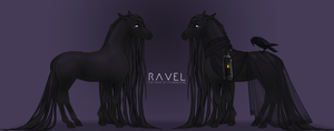 RAVEL REFERENCE by franknsteins