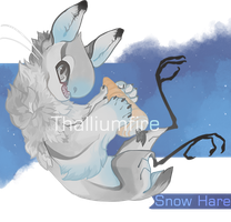 Snow Hare by NebNomMothership