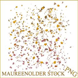 STOCK PNG leaf scatter by MaureenOlder