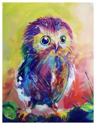 Colorful Owl by TooMuchColor