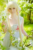 white flower by AGflower