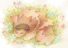 Sleepy Zigzagoon