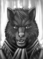 Wolf Study by 7THeaven
