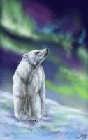 Polar Lights by Inverno-Luar