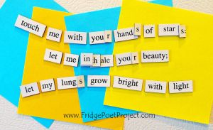 The Daily Magnet #233 by FridgePoetProject