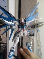 MG Freedom Gundam Complete by Aldemor