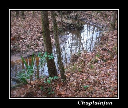 Stream of Reflections by chaplainfan