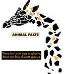 Illustrated Animal Facts: Giraffe by ProjectCornDog