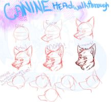 canine head 'walkthrough' by sexy-seductress-wolf