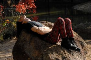 Taylor Red Plaid Pants 4 by LinzStock