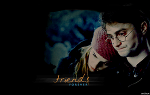 Harry and Hermione - Friends by Djuxi