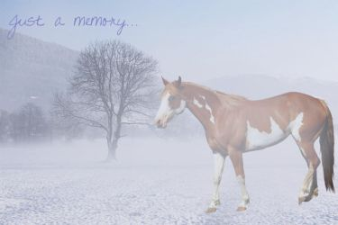 Just A Memory by ExceedingTheLimits
