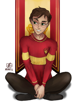 Quidditch Potter! by abiartz