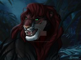 lion in the jungle / YCH
