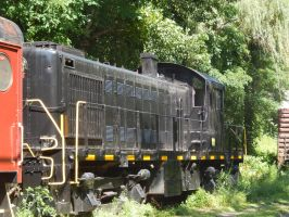 Catskill Mountain Railroad RS-1 #400 by Tracksidegorilla1