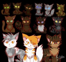 Dark Forest Cats by Night-Chimeras-Cry