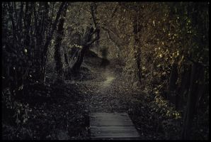 Run On Home by Art-ography
