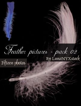 Feather pictures - pack 02 by LunaNYXstock